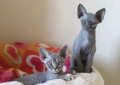 Lilou et Lola au 29 août