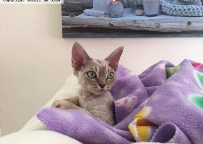 Mina trois mois et demi