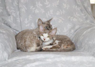 Mina&Olivia14319