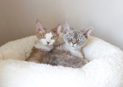 Olivia&Mina21519